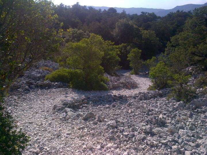 Schöner Downhill!!!