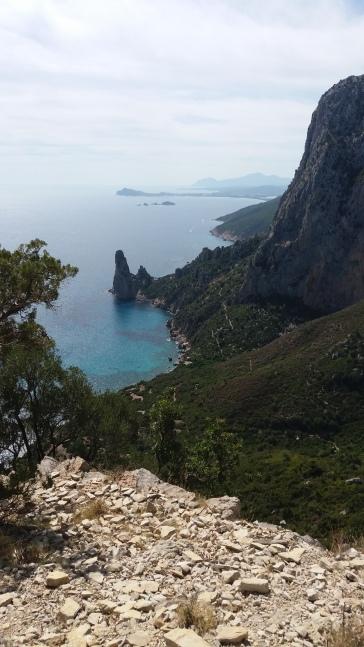 Salveggio Blu - Sardinien